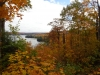 fall-scene-in-algonquin-1