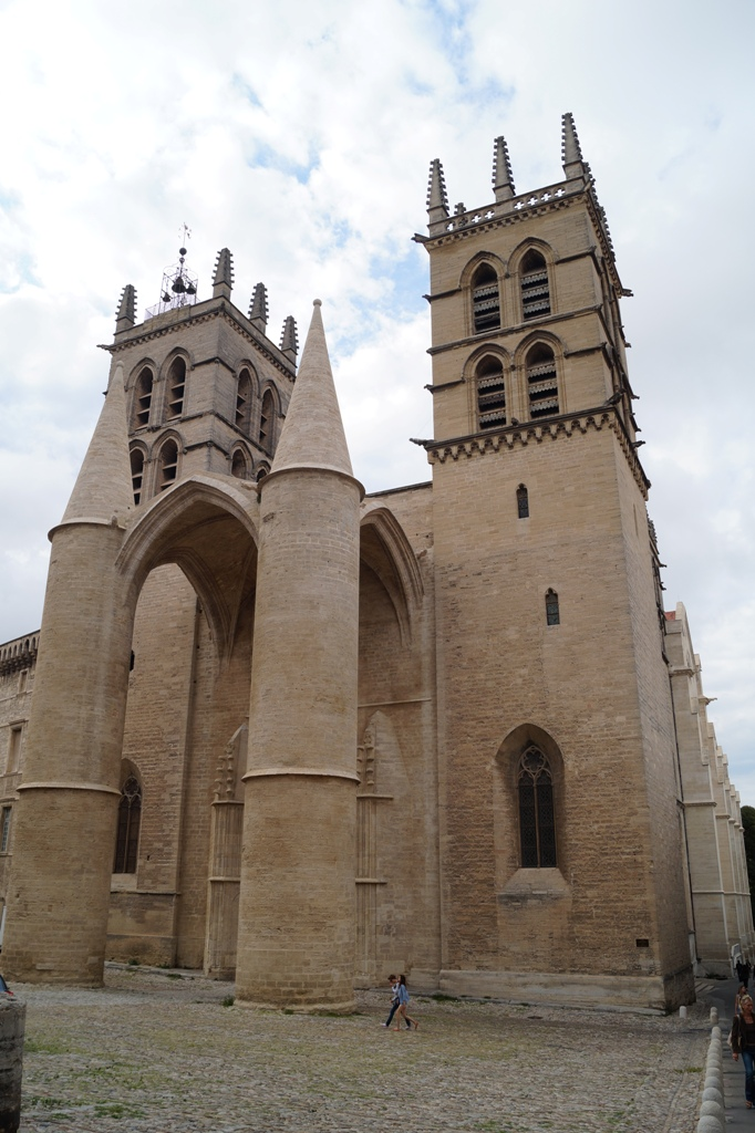 Montpellier Cathedral, beside the Faculty of Medicine