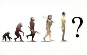evolution_where