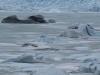iceland103
