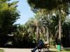 Small park in Monaco