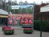 11_keukenhof-gardens-holland